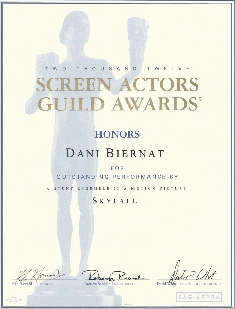 award skyfall